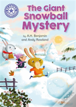 The Giant Snowball Mystery