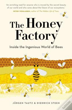 Wook.pt - The Honey Factory