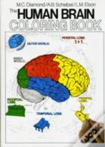 The Human Brain Colouring Book