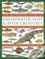 The Illustrated Guide To Freshwater Fish & River Creatures