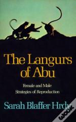 The Langurs Of Abu
