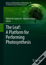 The Leaf: A Platform For Performing Photosynthesis