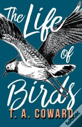 The Life Of Birds