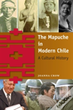 The Mapuche In Modern Chile