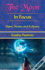 The Moon: In Focus