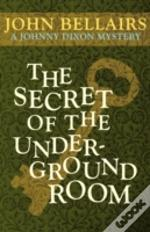 The Secret Of The Underground Room (A Johnny Dixon Mystery