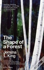The Shape Of A Forest