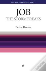 The Storm Breaks