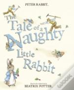 The Tale Of A Naughty Little Rabbit