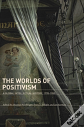 The Worlds Of Positivism