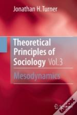 Theoretical Principles Of Sociology, Volume 3