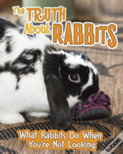 Wook.pt - Truth About Rabbits The