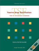 Twelve Step Facilitation For Co-Occurring Disorders Set Of 3 Facilitator Guides