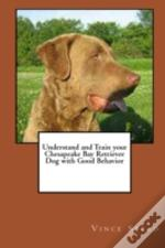 Understand And Train Your Chesapeake Bay Retriever Dog With Good Behavior