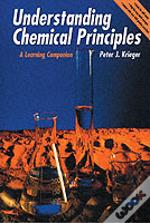 Understanding Chemical Principles