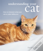 Understanding Your Cat