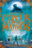 Untitled Novel 3 (Ned'S Circus Of Marvels, Book 3)
