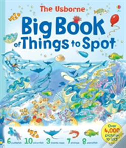 Wook.pt - Usborne Big Book Of Things To Spot