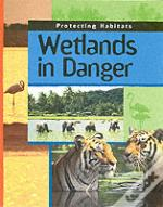 Wetlands In Danger