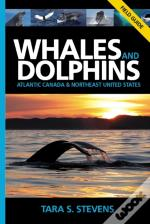 Whales & Dolphins Of Atlantic Canada & Northeast United States