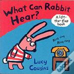 What Can Rabbit Hear?