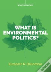 What Is Environmental Politics?
