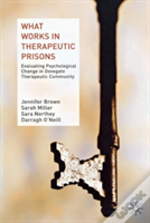 What Works In Therapeutic Prisons