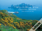 Wild Flowers Of The Channel Islands Little Souvenir