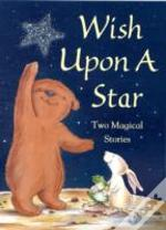 Wish Upon A Starlittle Bear'S Special Wish; The Wish Cat