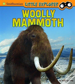 Wook.pt - Woolly Mammoth