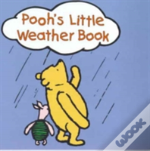 Wtp Pooh And The Weather Mini T