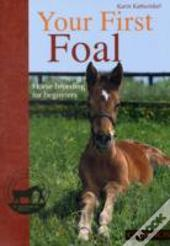Your First Foal