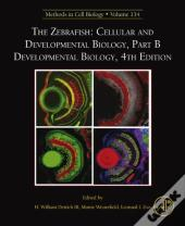 Zebrafish: Cellular And Developmental Biology, Part B Developmental Biology
