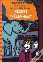 Zigotos De Zoo ; Secret D'Éléphant